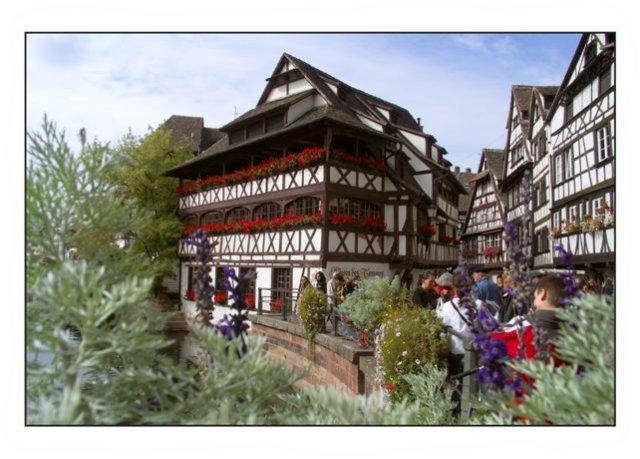 Strasbourg la Maison des Tanneurs à 15 km du gite d'Angèle