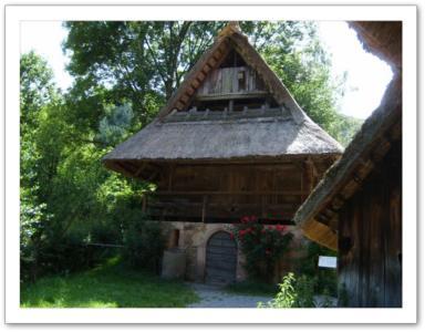 Musée de Gutach à une heure du gîte d'Angèle à Strasbourg